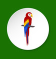 macaw parrot icon in flat style vector image vector image
