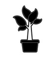 plant sprout abstract icon imag vector image vector image
