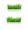 set of borders with fresh green grass vector image