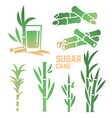 sugar cane silhouettes icons isolated on white vector image vector image