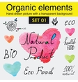 Organic elements and raw food diet designs vector image