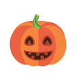 closeup of smiling pumpkin vector image vector image
