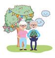 elderly couple cartoon vector image