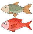 fish colored hand drawing vector image