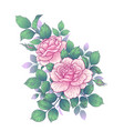 floral bunch with pink roses buds and leaves vector image