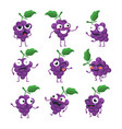 funny bunch of grapes - isolated cartoon vector image vector image