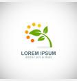 green leaf plant organic logo vector image vector image