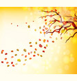 hello autumn of a forest in autumn with leaves vector image