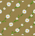 seamless pattern from field chamomiles on stems vector image vector image