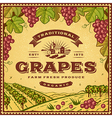 Vintage grapes label vector image vector image