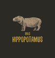 wild hippopotamus engraved hand drawn in old vector image vector image