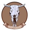 bulls skull vector image vector image