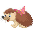 cartoon bahedgehog with butterfly vector image vector image