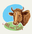 cows head in a graphic style hand drawn vector image vector image