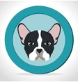 cute face puppy blue label vector image