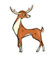 deer friendly cute forest animal cartoon vector image