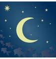 Fabulous moonlit night vector image vector image