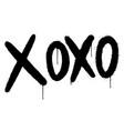 graffiti xoxo word sprayed isolated on white vector image