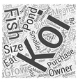 Purchasing The Koi For Your Pondwps Word Cloud vector image vector image