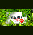 summer sale bannerbeautiful background vector image