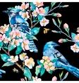 Blue jay on a flowering branch Honeybee Spring vector image