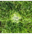 ecological blurred with grass and eco label can vector image