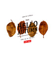 hello autumn goodbye summer vector image