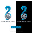 seahorse movie concept with film reel isolated vector image