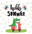 summer croco vector image vector image