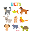 Set of pets Cute home animals in cartoon style vector image