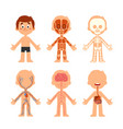 cartoon boy body anatomy human biology systems vector image vector image