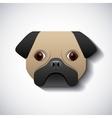 dog pug race design vector image vector image