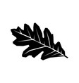 oak leaf black silhouette icon isolated on a white vector image vector image