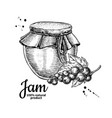 red currant jam glass jar drawing fru vector image