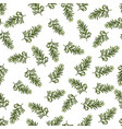 seamless pattern with hand drawn spice vector image