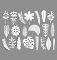 Tropical white paper cut leaves trendy summer