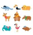 Dressed Animals Set vector image