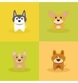 Cute Cartoon Dogs vector image