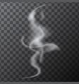 delicate white realistic cigarette smoke waves vector image vector image