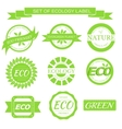 eco nature organic white label on isoleted green vector image