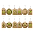 Ecology Cardboard Tags vector image vector image