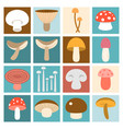 mushroom flat design vector image vector image