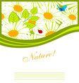nature pic vector image vector image