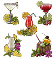set of five summer cocktails vector image vector image