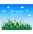 Springtime Meadow vector image vector image