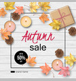 autumn top view background vector image vector image