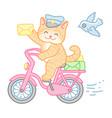 cat postman vector image vector image