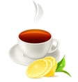 cup of tea on white background vector image