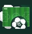 modern professional grass football soccer vector image vector image