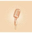 Retro golden microphone vector image vector image